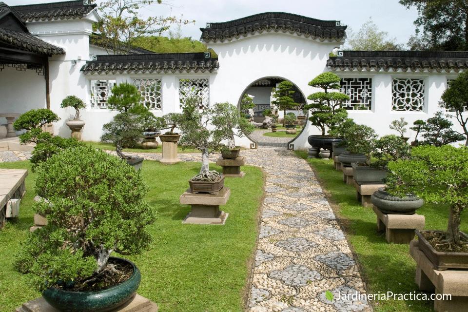 Jardín Bonsái